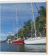 Sailboats  Wood Print by Dianne  Lacourciere