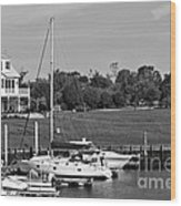 Sailboats Docked At North Myrtle Beach Mono Wood Print by John Rizzuto