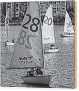 Sailboats On The Charles River II Wood Print