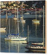 Sailboats Sunrise Wood Print