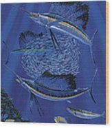Sailfish Round Up Off0060 Wood Print