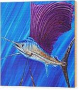 Sailfish Wood Print