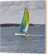 Sailing Along Wood Print