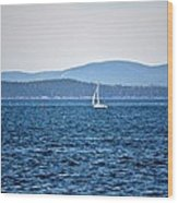 Sailing Amidst The Buoys Wood Print