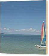 Sailing  At Key Largo Wood Print