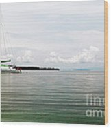 Sailing At Star Beach Wood Print