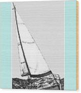 Sailing Freedom On A Reach Wood Print