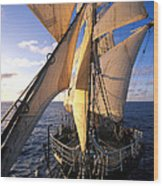 Sailing Boats Kruzenshtern Wood Print by Anonymous