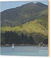 Sailing Cook Strait Wood Print