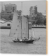 Sailing Free In Black And White Wood Print