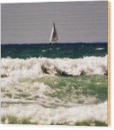 Sailing In California Wood Print
