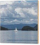 Sailing In The San Juans Wood Print by Carol Groenen