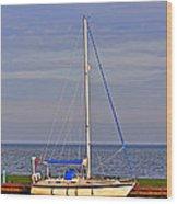 Sailing In Volendam Wood Print