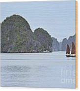 Sailing Junk Boats In Halong Bay Wood Print by Sami Sarkis