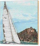 Bay Of Islands Sailing Sailing Wood Print