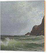 Sailing Off The Coast Wood Print