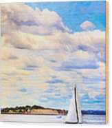 Sailing On A Beautiful Day In Boston Harbor Wood Print