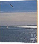 Sailing On Christmas Ventura Harbor Wood Print