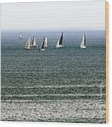 Sailing On Lake Erie Wood Print