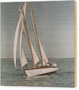 Sailing, One Of The Many Sports Wood Print