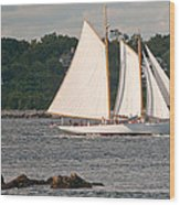 Sailing Portland Wood Print