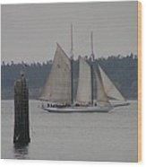 Sailing Puget Sound Wood Print