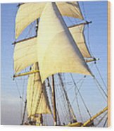Sailing Ship Carribean Wood Print by Douglas Barnett