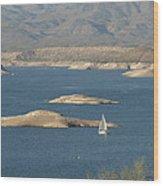 Sailing The Desert Wood Print