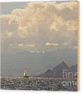 Sailing The Sea Of Cortez Wood Print