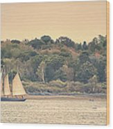 Sailing The Shoreline Wood Print