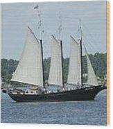 Sailing Through History Wood Print