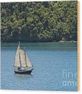 Sails In The Wind Wood Print