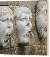 Saint Augustine Fountain Wood Print