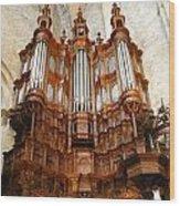 Saint-bertrand-de-comminges Wood Print