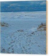 Saint Joseph Michigan Beach In Winter Wood Print