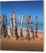 Saint Malo Beach Wood Print