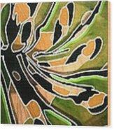 Saint Papilio Polyxenes Study Wood Print