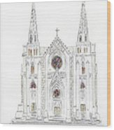 Saint Patrick's Cathedral Wood Print