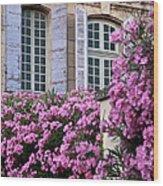 Saint Remy Windows Wood Print
