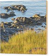Salem Coastline Wood Print