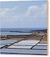 Salinas De Janubio On Lanzarote Wood Print