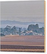 Salinas Valley Wood Print