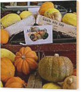 San Joaquin Valley Squash Display Wood Print