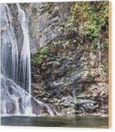 Salmon Creek Falls Wood Print