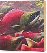 Salmon Run - Painterly Wood Print