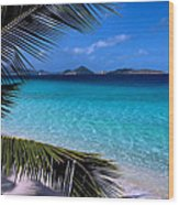 Saloman Beach - St. John Wood Print by Stephen  Vecchiotti