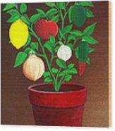 Salsa Plant Wood Print