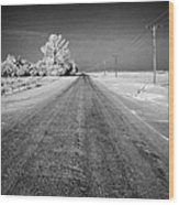 salt and grit covered rural small road in Forget Saskatchewan Canada Wood Print