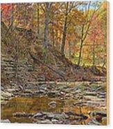 Salt Creek Wood Print