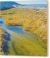 Salt Creek Near Salt Creek Trail In Death Valley National Park-california Wood Print